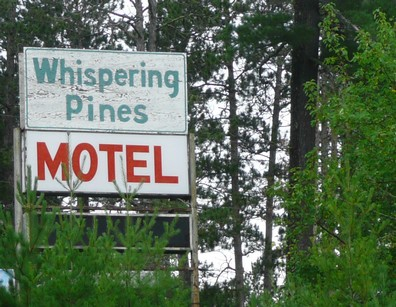 Pine trees whisper, palm trees rustle